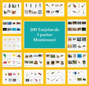 Paquete de 200 tarjetas de 3 partes Montessori