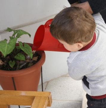 Vida Práctica Montessori - que es y por que es importante
